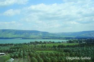 Dagania-01